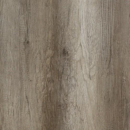 dub starožitný