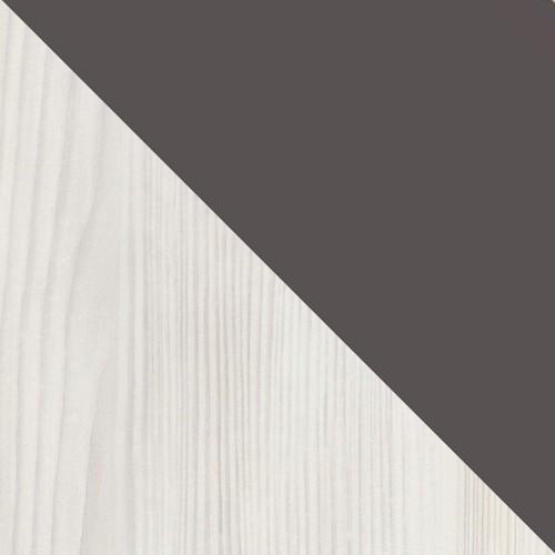borovica norska / šedá