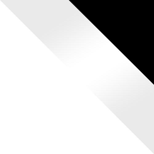 biela / biely lesk + čierny